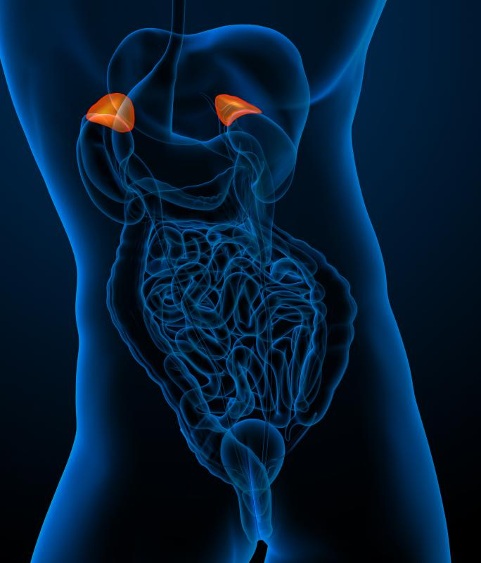The adrenal glands trigger the secretion of mineralocorticoids, glucocorticoids and androgens.