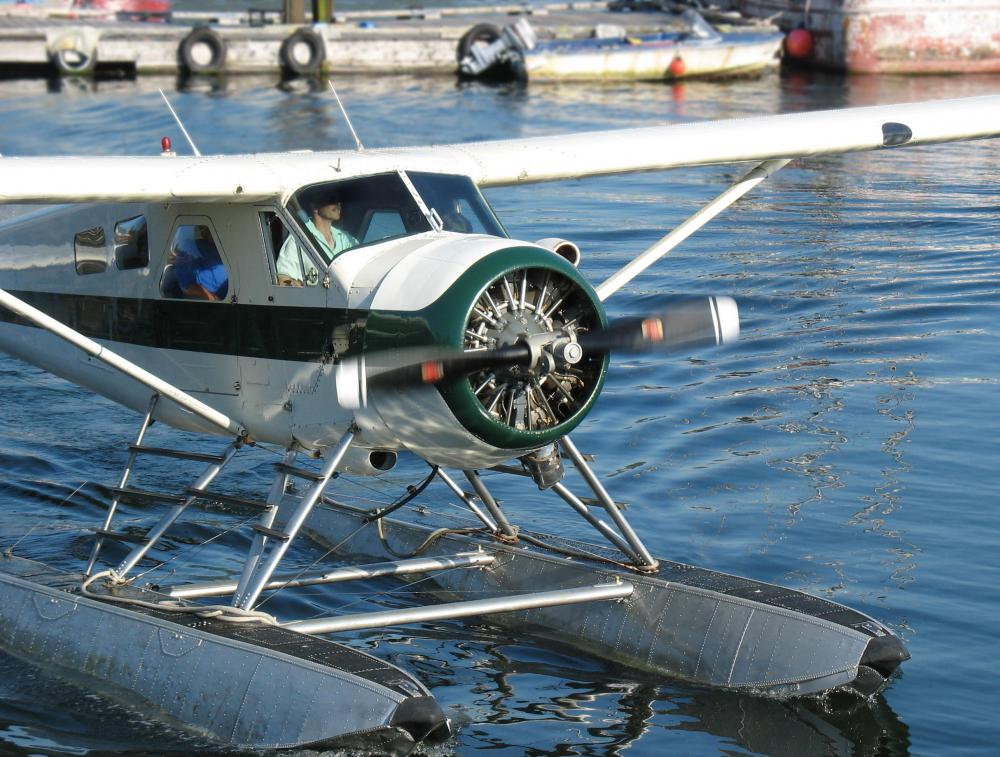 Seaplanes can take off and land in water.