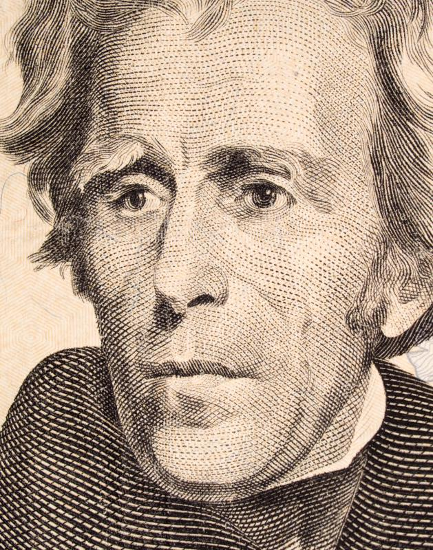 The Whig Party stood against President Andrew Jackson's Democratic Party when they thought too much power was being handed over to the executive branch.