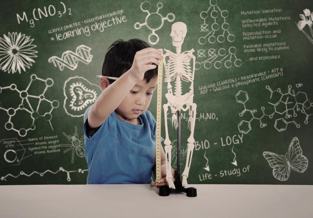 Some private schools offer a focus on one particular area, such as science.