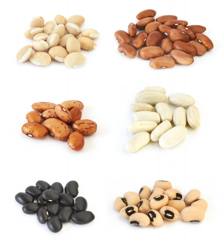 Assorted beans, including pinto beans on the center left.