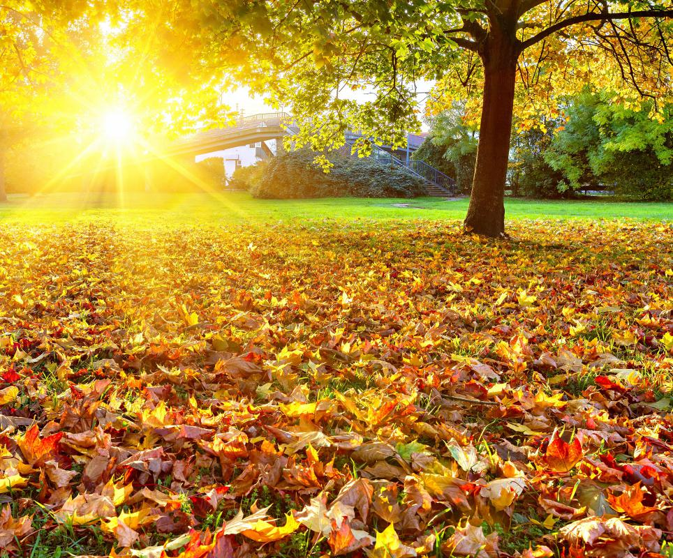 An Indian Summer means warm, quiet autumn weather.
