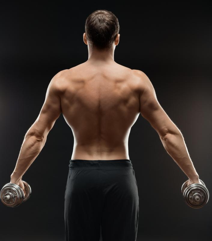 Having well developed lats, or latissimus dorsi muscles of the back, along with a thin waist, give athletes a v-shaped torso.