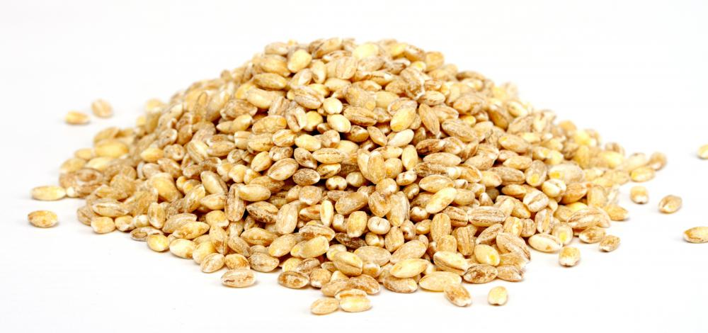 Barley grains.