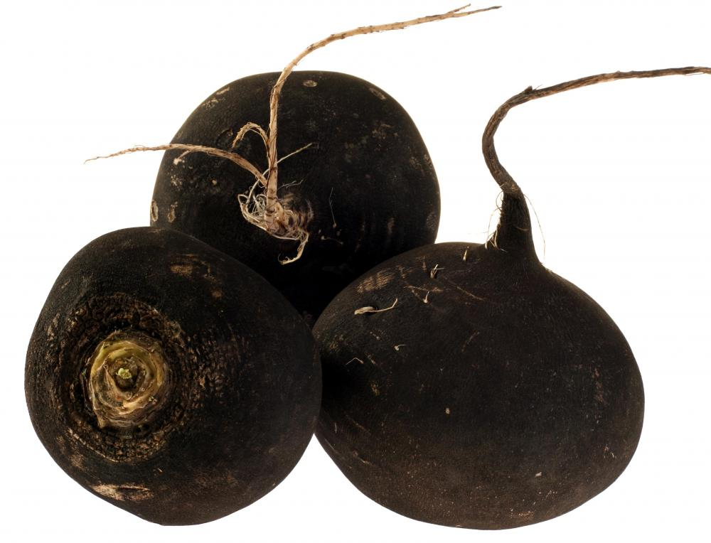 There are several different varieties of radishes available, including black radishes.