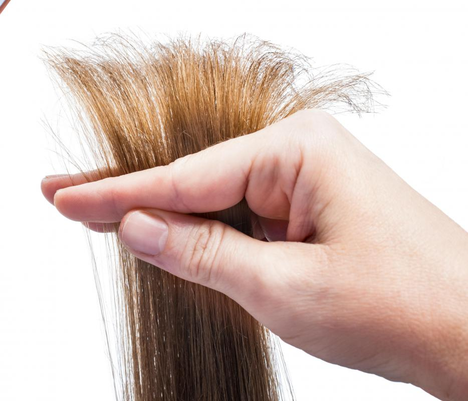 Hair should be trimmed regularly to avoid split ends.