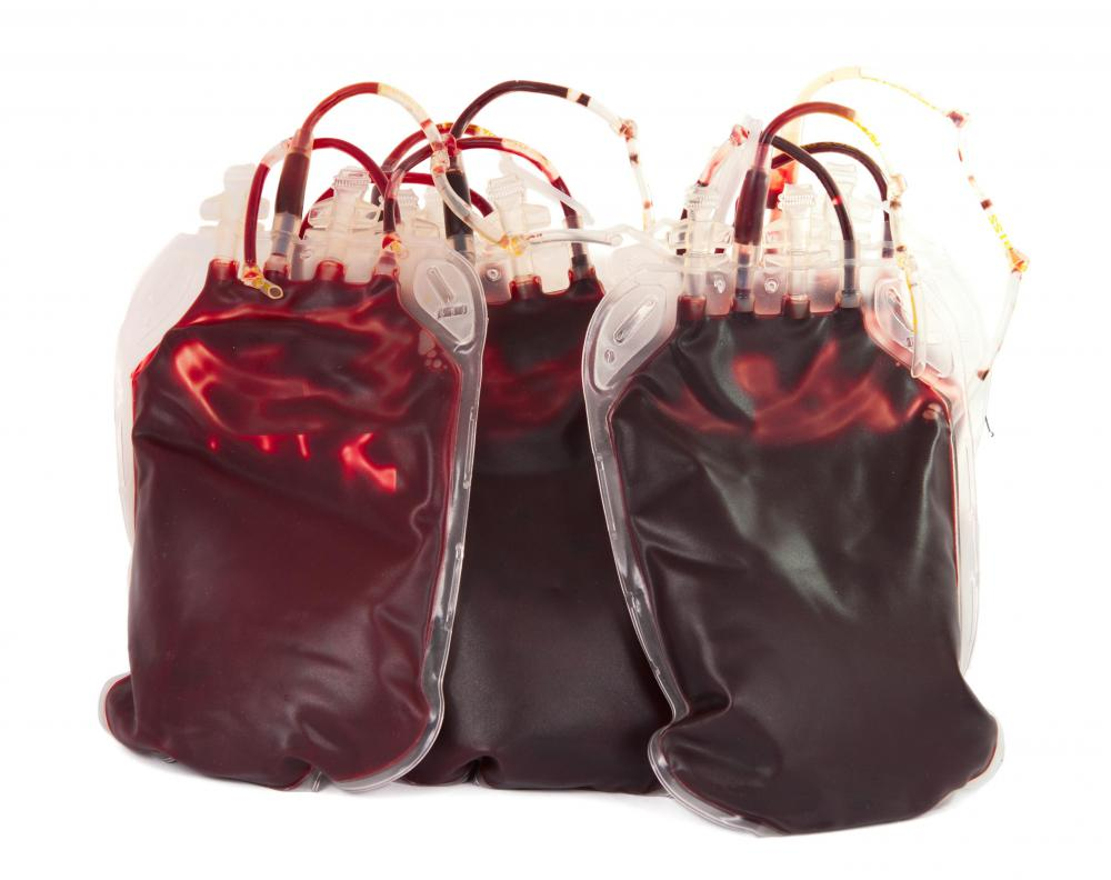 Pouches of blood.
