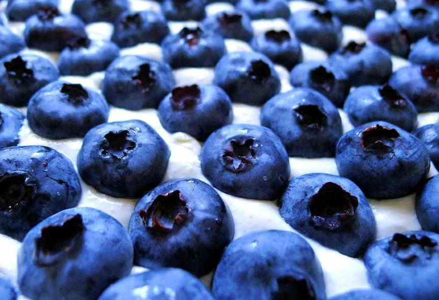Blueberries are high in antioxidants.