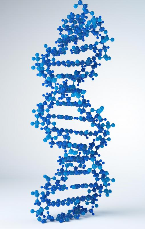 MRNA is a template created from DNA.