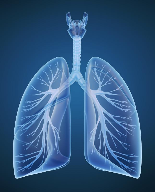 Carbon dioxide is a waste by-product of metabolism and removed from the body via the lungs when a person exhales.