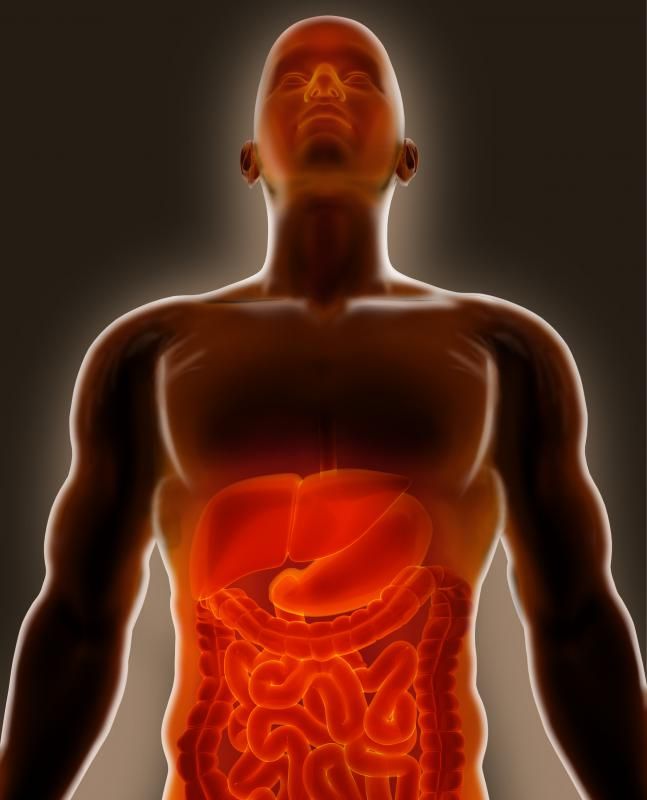 Last Stages Of Stomach Cancer