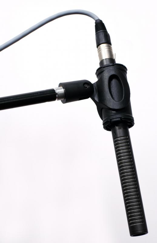 For professional quality sound, you may want to consider using a shotgun microphone with your video camera.