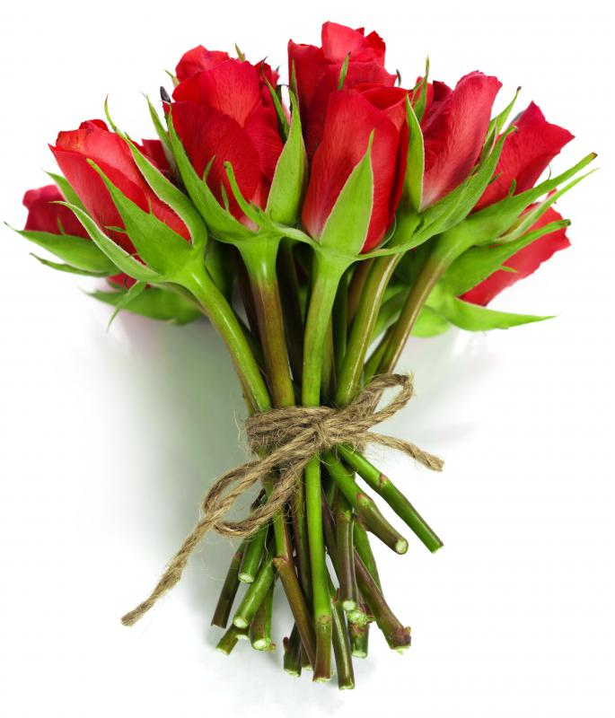 Red roses are one of the most popular Valentine's Day gifts.