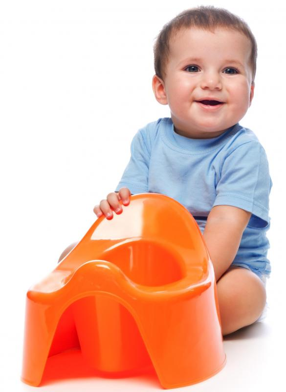 A potty training seat can be a stand-alone chair.