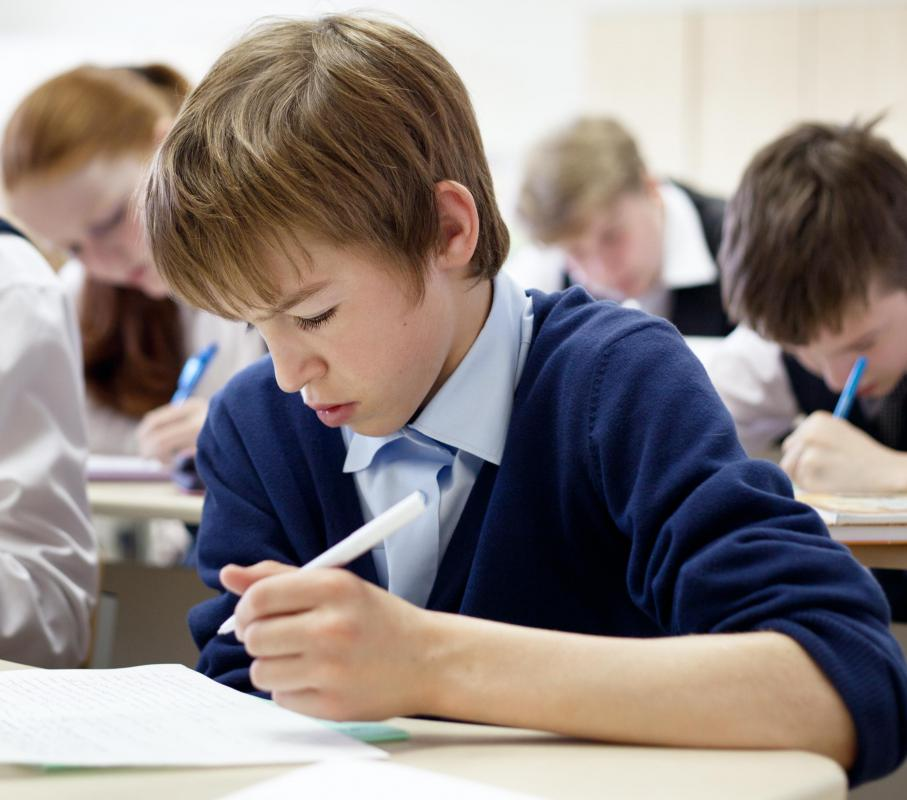 Standardized tests measure a child's academic performance.