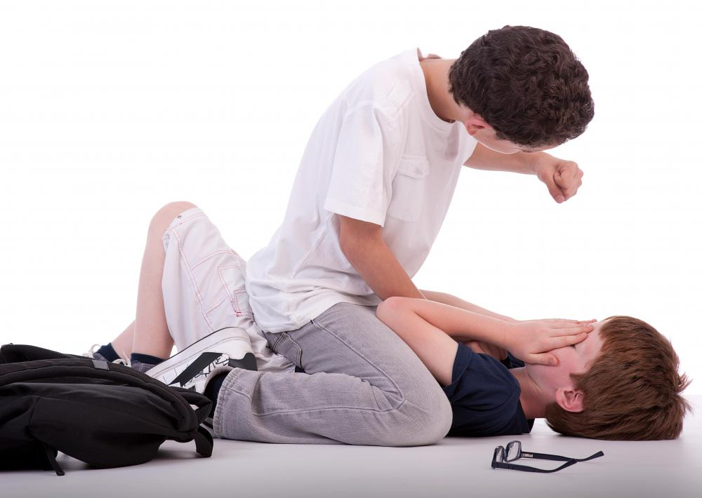 Physical bullying is a common problem at schools.