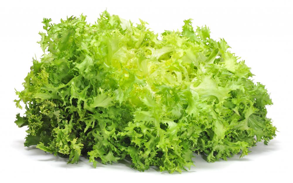 http://images.wisegeek.com/bunch-of-escarole.jpg