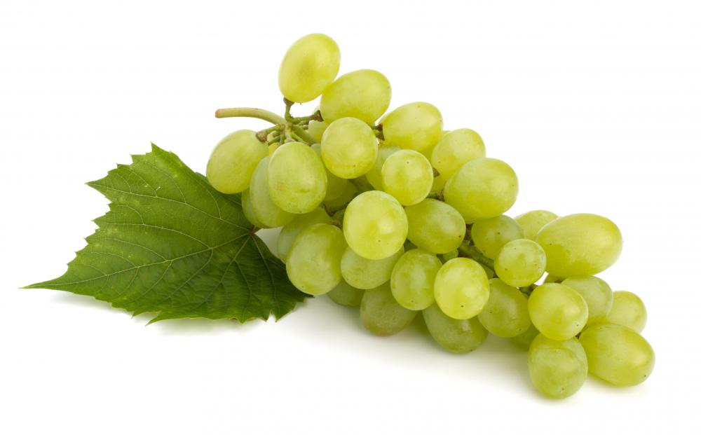 Noble rot is a fungus that is allowed to grow on certain grapes to produce sweet wines.
