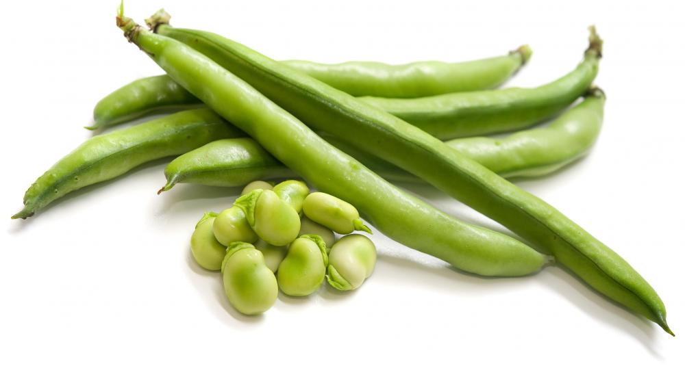 What are Green Beans? (with pictures)