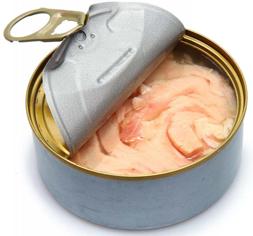 What are some meal ideas using canned fish with pictures for Tuna fish can