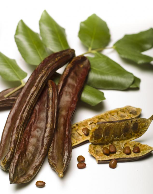 Carob is often used as a gluten-free, dairy-free alternative to traditional chocolate.