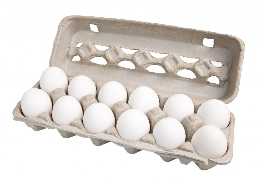 is egg considered dairy