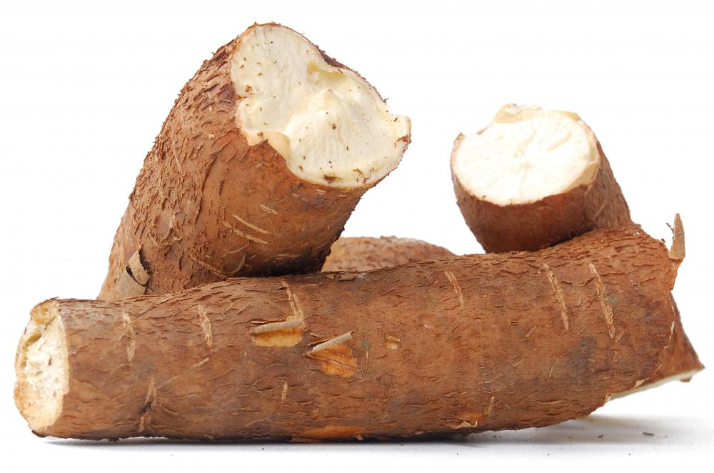 Cassava may be used to make manioc flour.