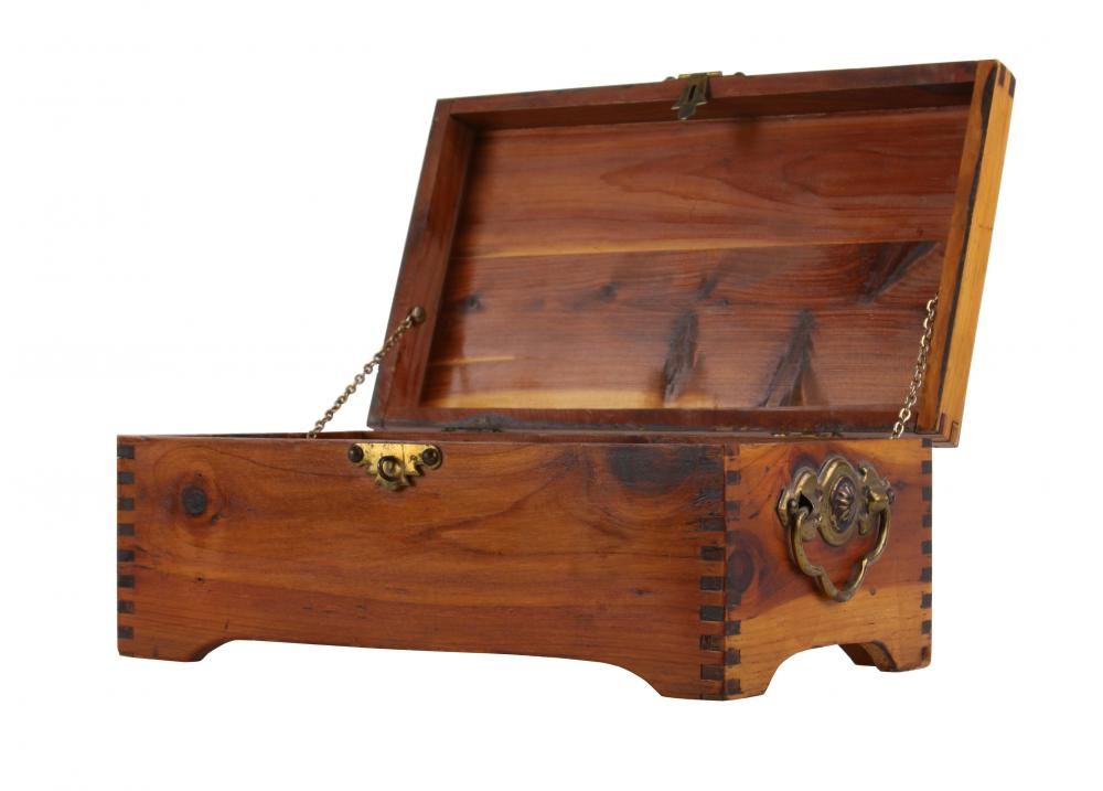 Some people use a cedar chest to store moth-sensitive material.