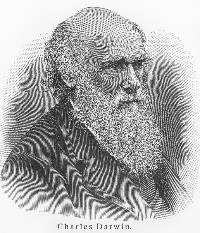 Charles Darwin provided theories of evolution that changed modern thinking.