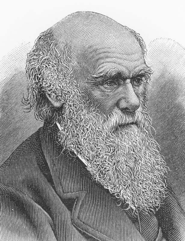 Charles Darwin is credited for developing a persuasive argument for the theory of evolution.
