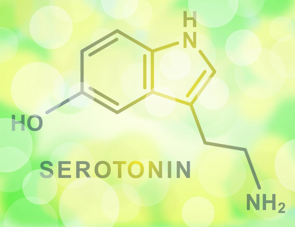 Opiate receptors regulate the neurotransmitter serotonin.