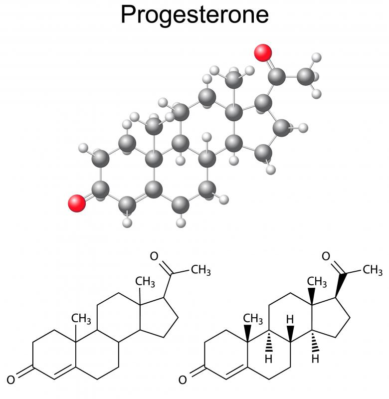A human placenta produces hormones, including progesterone.