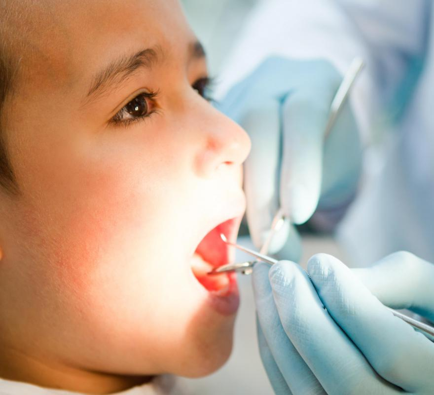 Holistic dentists choose a specialty, such as pediatrics, and apply holistic methods when treating their patients.