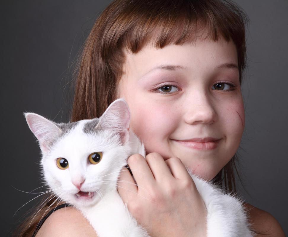 Children often become very attached to pets.