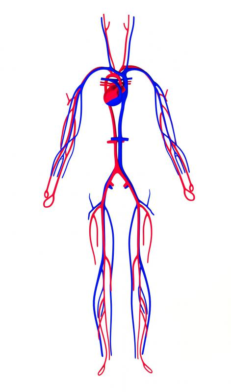 Most individuals who suffer from claudication have some kind of clogging of their circulatory system or some other problem with circulation, such as a weak heart.