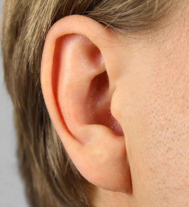 Auditory phonetics involves the study of how individuals perceive sounds as they are heard.