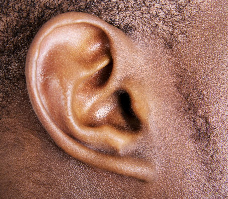 In regards to the ear, the auricle is the portion that exists outside of the head.