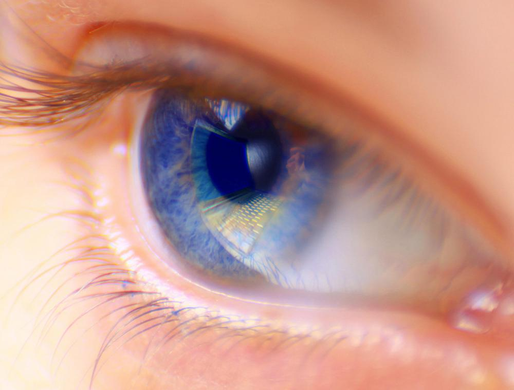Eyes are one of the moistest areas of the body's exterior.