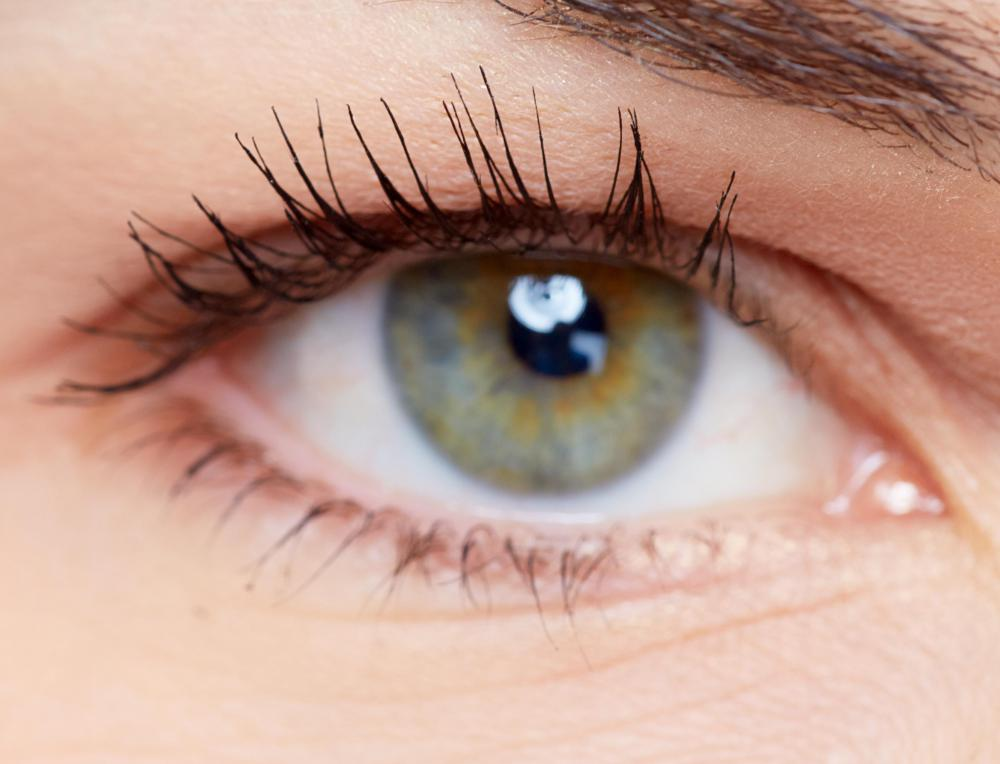 Genetic variance can cause differences at an observable level, such as skin and eye color.