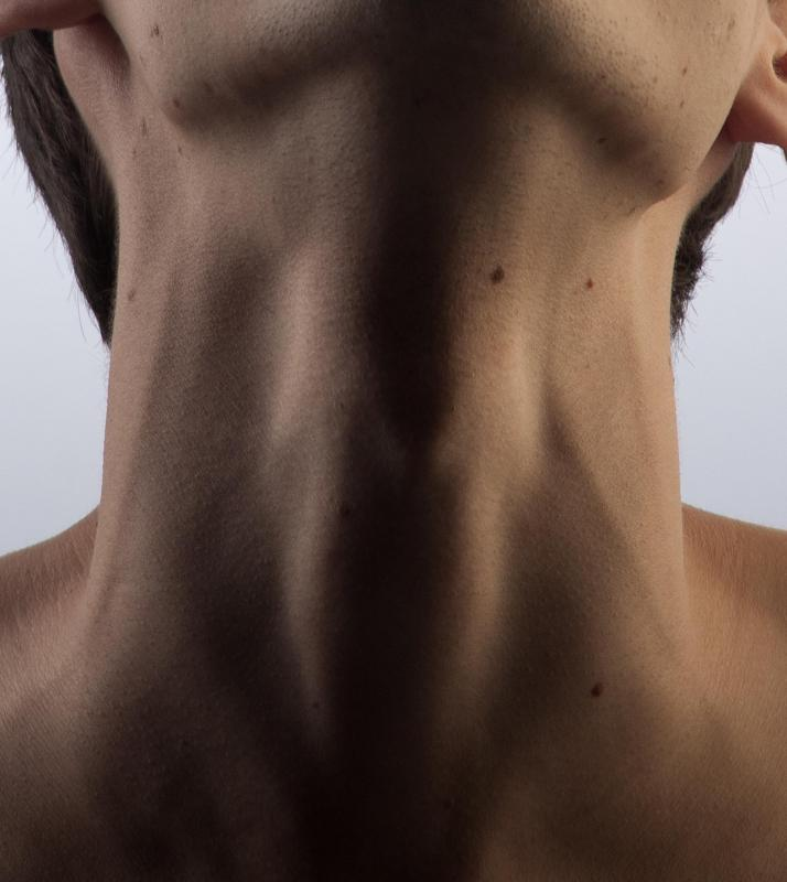 There are two jugular veins on each side of the neck.