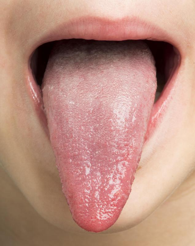 Each of the tongue's taste buds has 50 to 150 taste receptors.