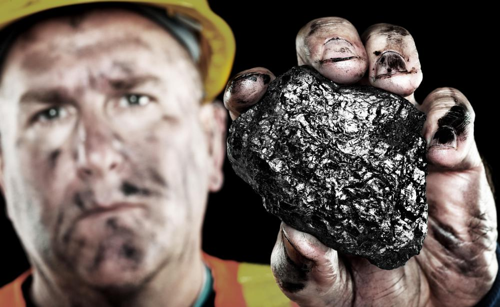"""Canary in a coal mine"" refers to an early safety measure taken by coal miners."