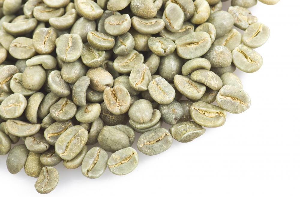 Unroasted coffee beans are light in color.