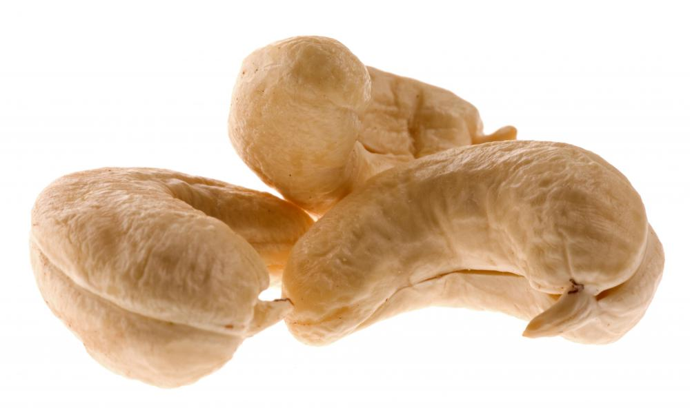 Cooked cashews are safe to eat.