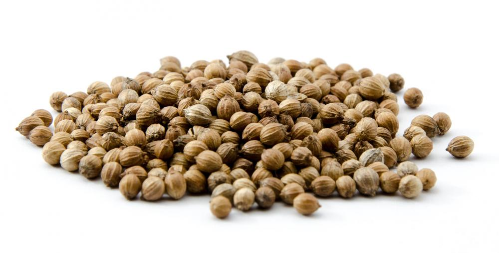 Ground coriander seeds are often used to season sambar.