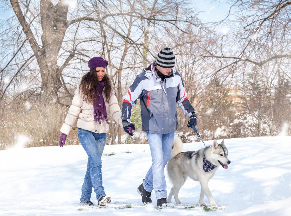 Winter walks are great exercise, and they help prevent cabin fever.