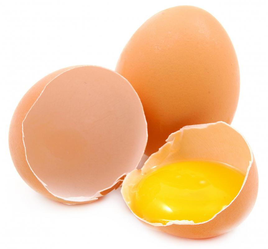 The chalaze helps to keep the yolk of an egg in place.