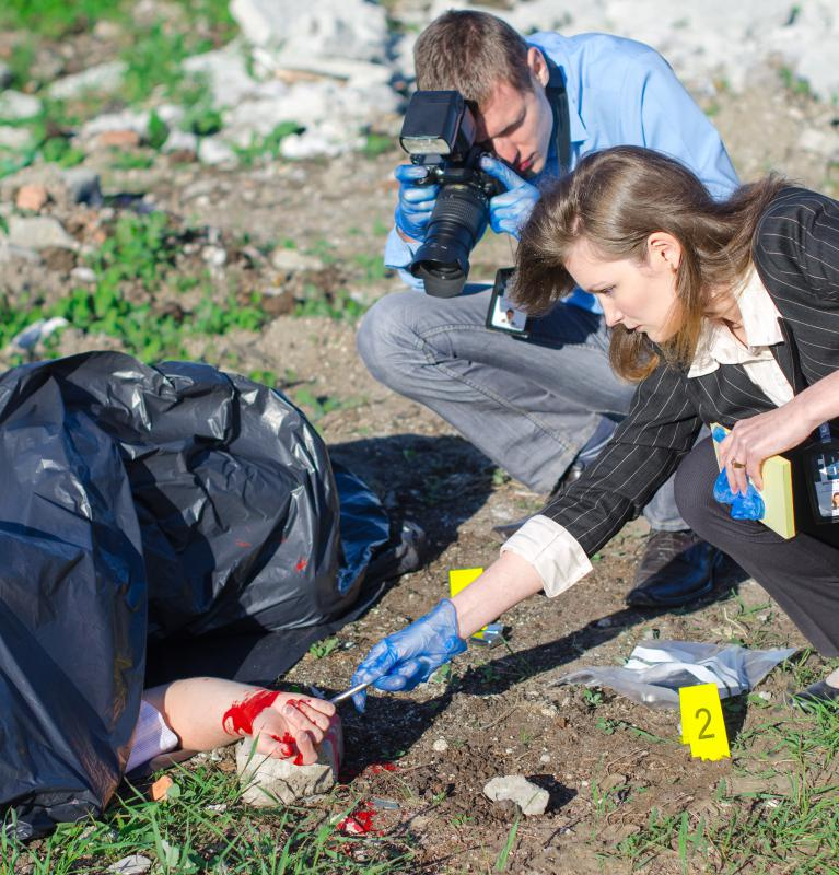 crime scene investigators make sure proper procedures are followed at the scene - Description Of A Crime Scene Investigator