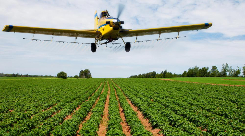 Insecticides can be sprayed on crops from aircraft.