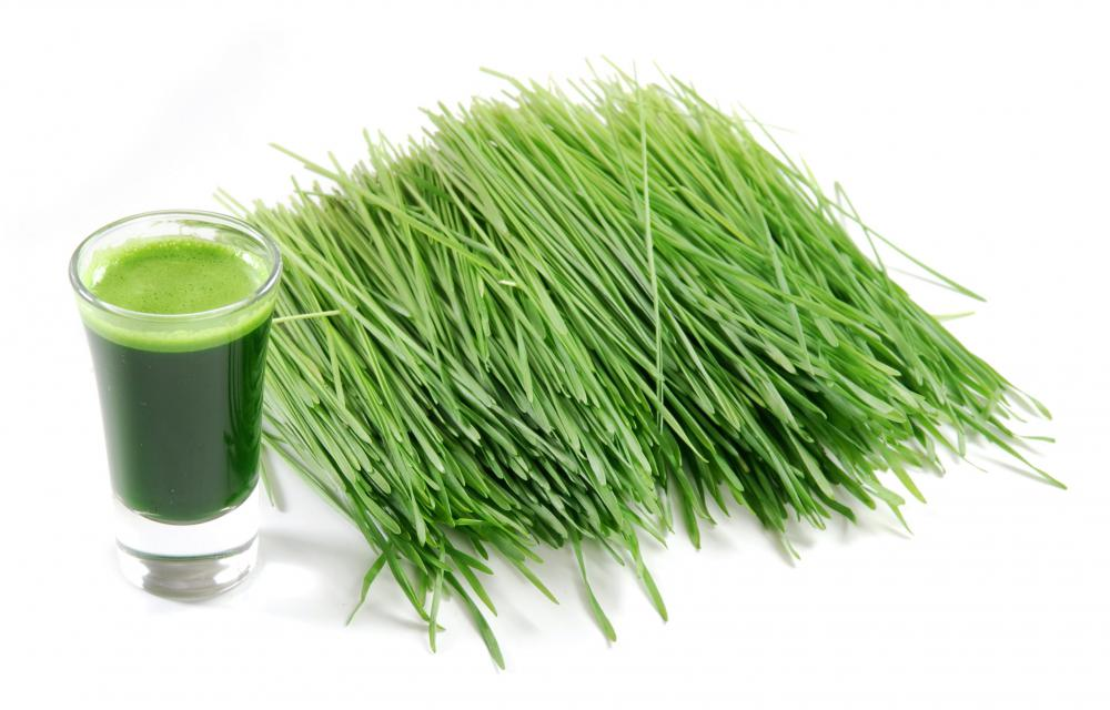 Wheatgrass and wheatgrass juice.